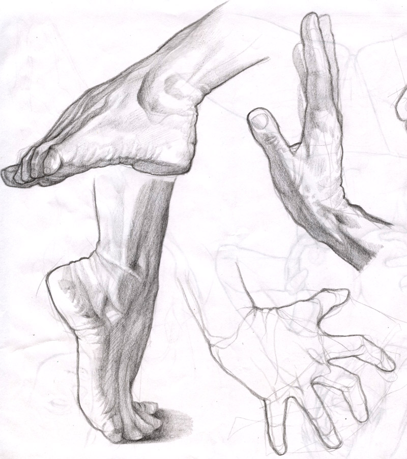 800x903 Hand And Foot By Molybdenumgp03