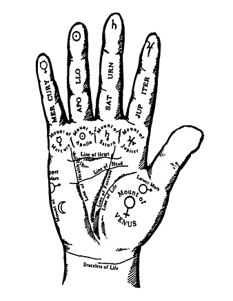 338x435 How To Read Your Palms