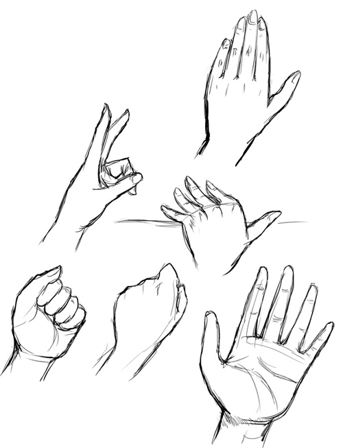 hand model for drawing at getdrawings com free for personal use