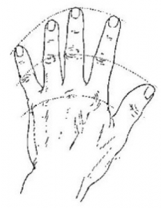 232x300 Drawing Hands 5 Critical Things To Keep In Mind My Drawing