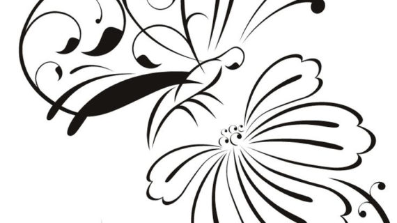 570x320 Outline Drawing Of A Butterfly Hand Drawing Butterfly Vector