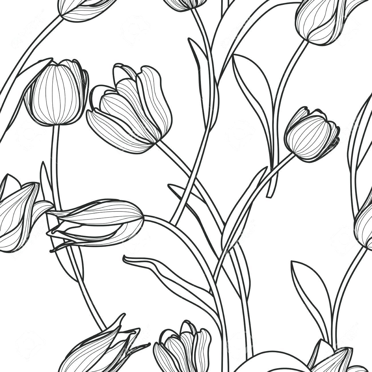 1300x1300 Rose Flower Outline Drawing Contour Stock Vector Lotus Clip Art