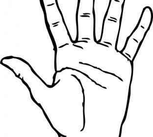 312x280 Mandatory Hands Palms Protection Clip Art Vector Clip Art Free
