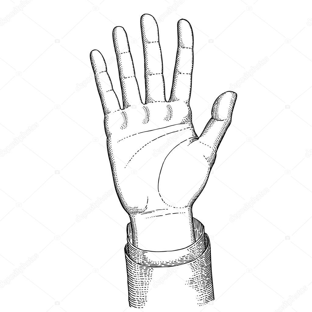 1024x1024 Palm Hand Stock Vector Paulartworks