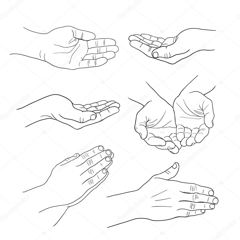 1024x1024 Hands Palm Set Linear Drawing On White Background Stock Vector