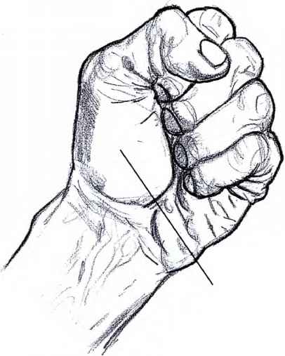 406x507 Female Hand Palm Drawing