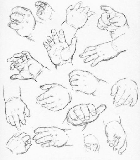 447x511 Studio Muses September Newsletter Drawing The Hand