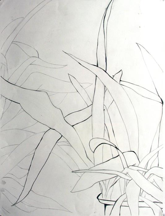533x700 Drawing 1