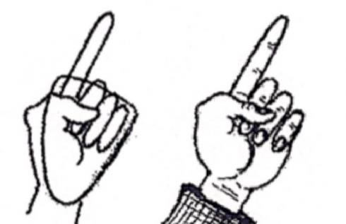 490x317 How To Draw A Hand Fazzino