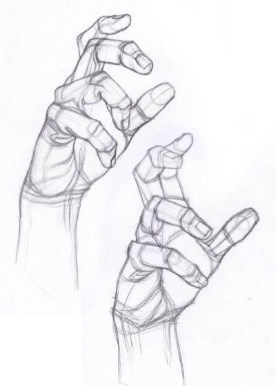 400x559 Hand Positions 2 Vectorart Anatomy, Drawings