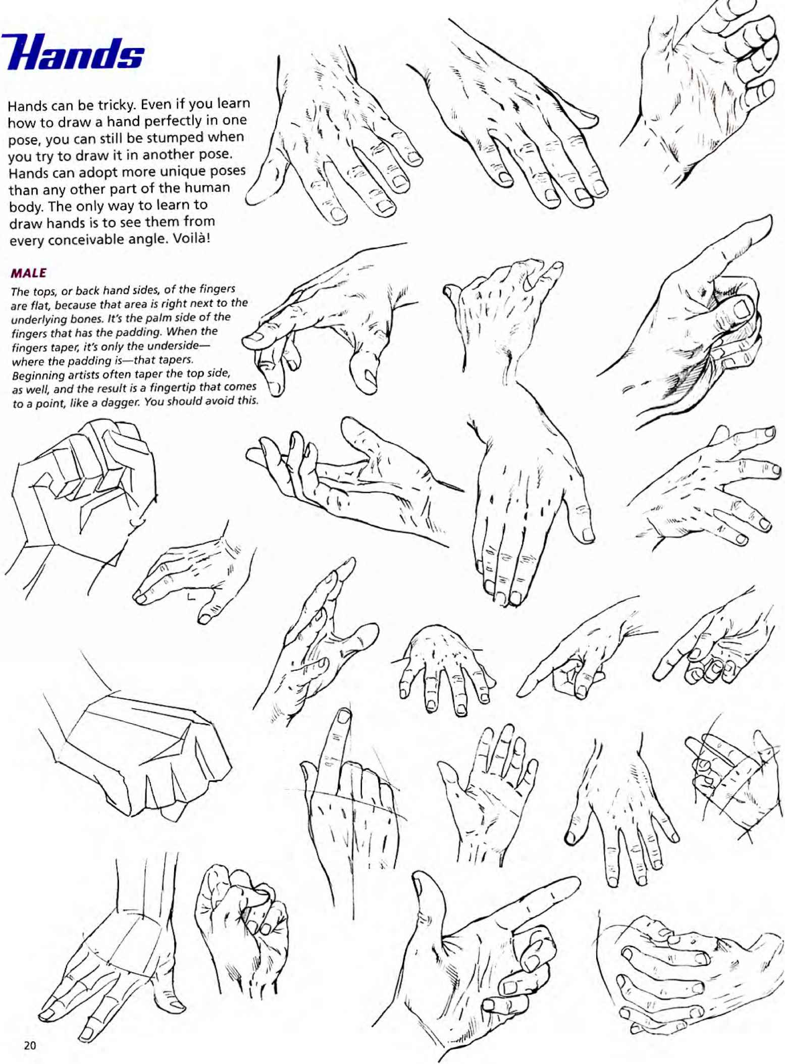 Hand Positions Drawing
