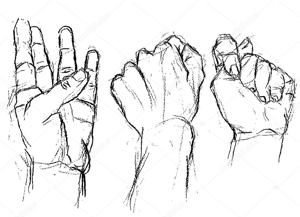 1023x741 Three Different Hand Positions Stock Vector Zelena