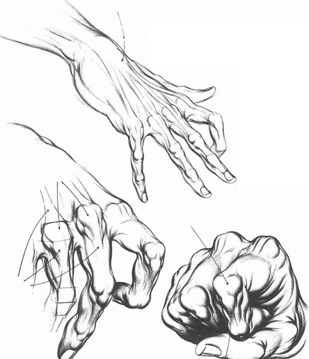 Hand Positions For Drawing