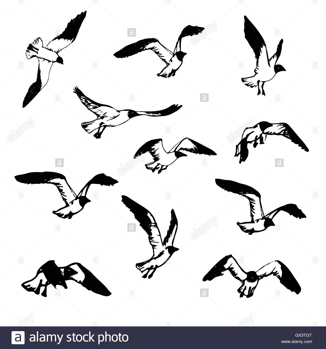 1300x1390 Hand Drawn Flying Seagulls. Black And White Illustration Sketch