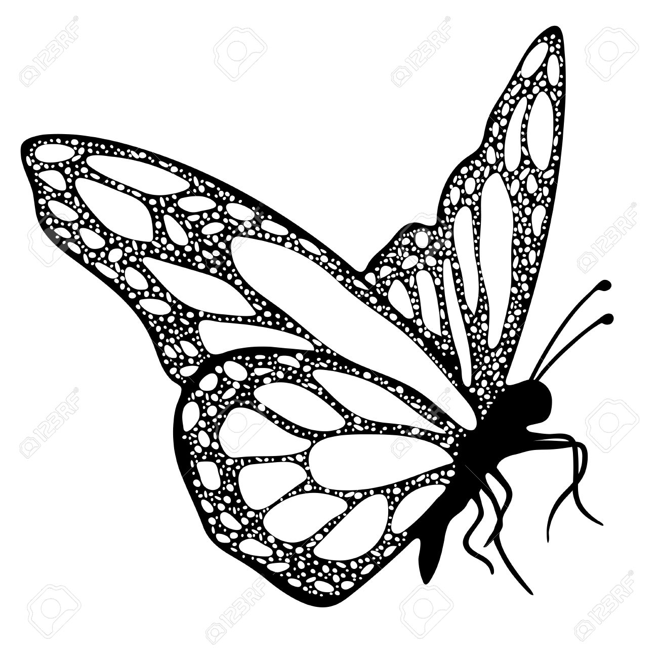 1300x1300 Butterfly, Monochrome, Coloring Book, Black And White Illustration