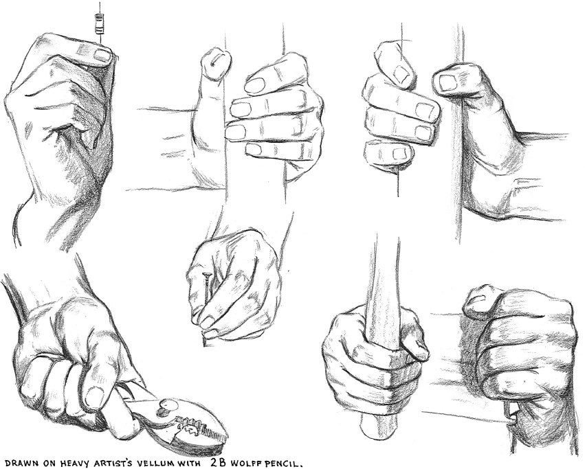 851x683 Drawing Of The Hand