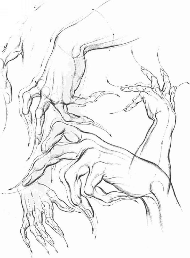736x1000 Drawn Hand Gesture Hogarth