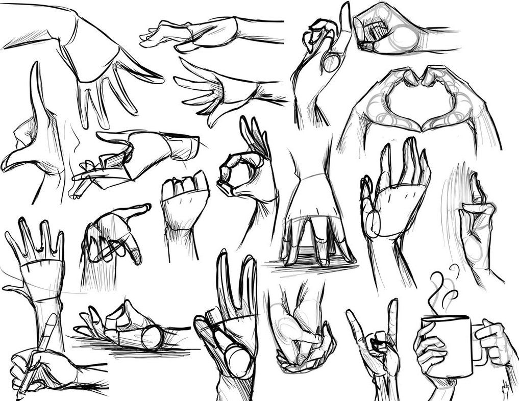 1017x786 Hand Reference By Vmillzy