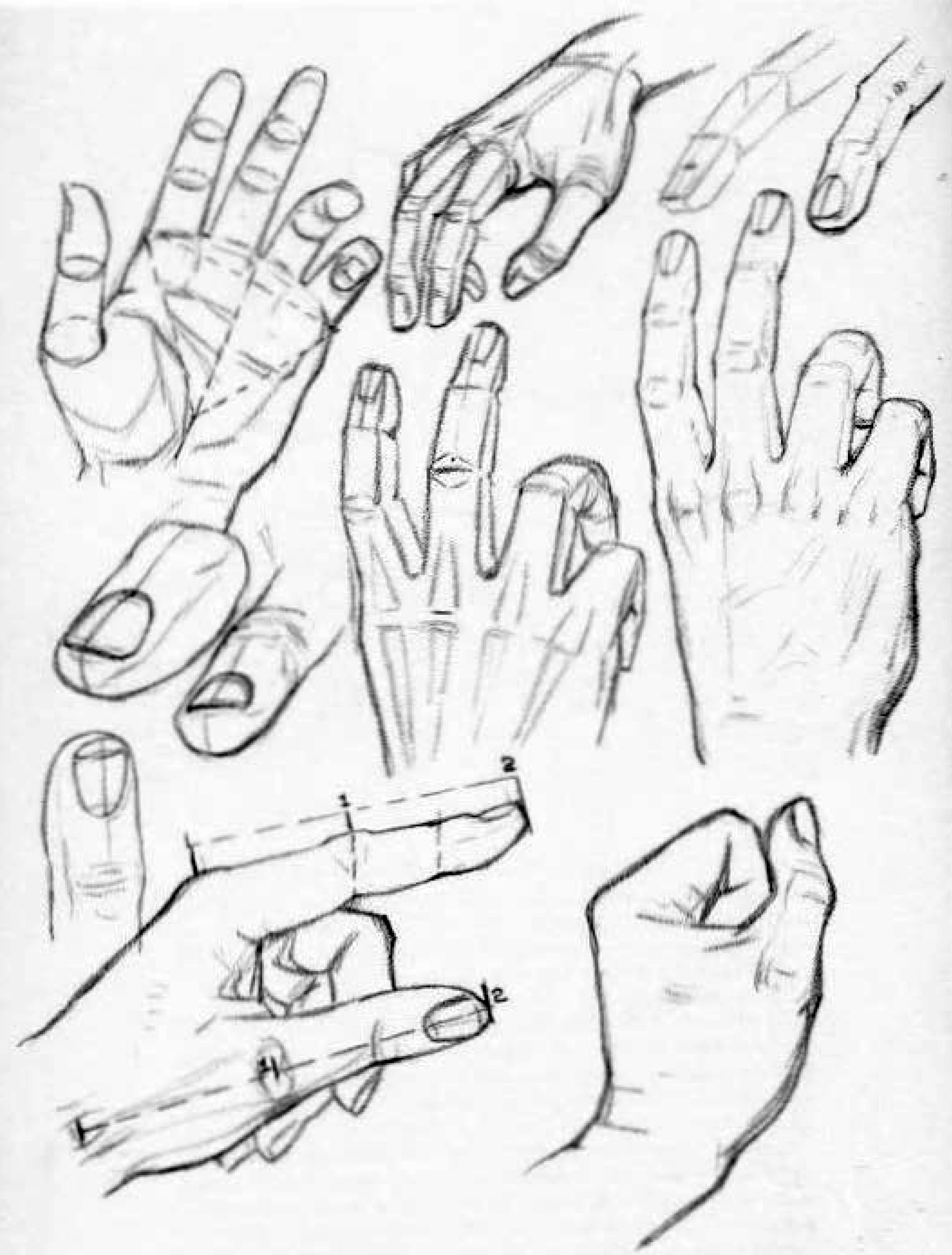 2194x2892 How To Draw Hands