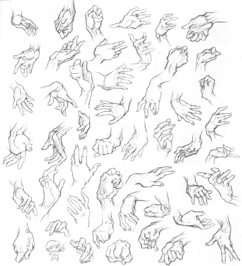 Hand Reference Drawing At Getdrawings Free For Personal Use