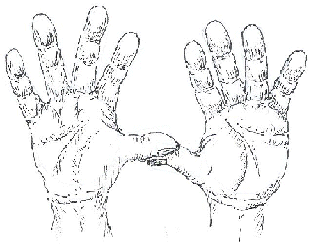 447x352 How To Draw Hands