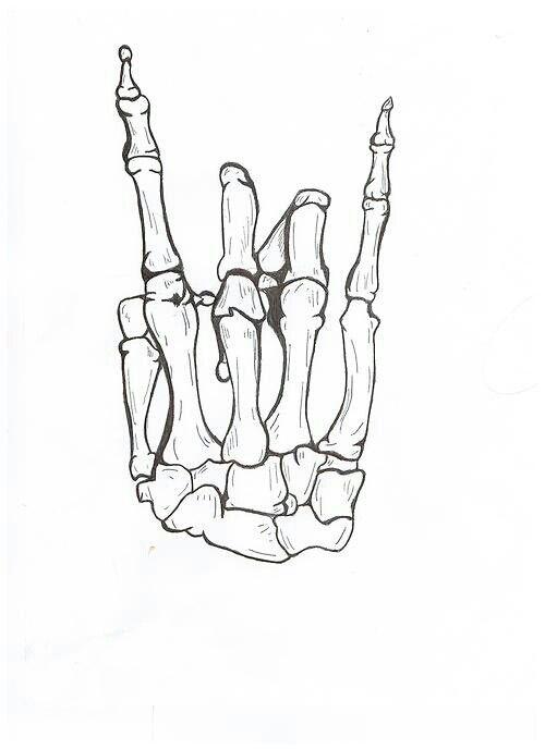 Hand Skeleton Drawing