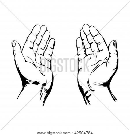 450x470 Praying Hands Vector Amp Photo Bigstock
