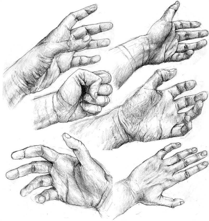 869x920 Hand Studies By Powerswithin
