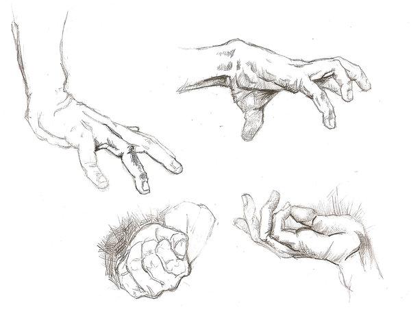 600x458 Hand Study 1 By Lolzards