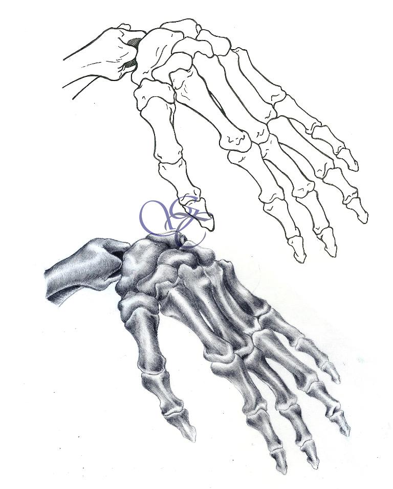 768x954 Hand Study By Giu Sama