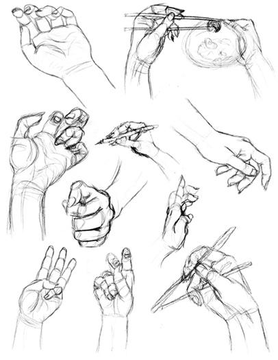 406x525 Life Drawing