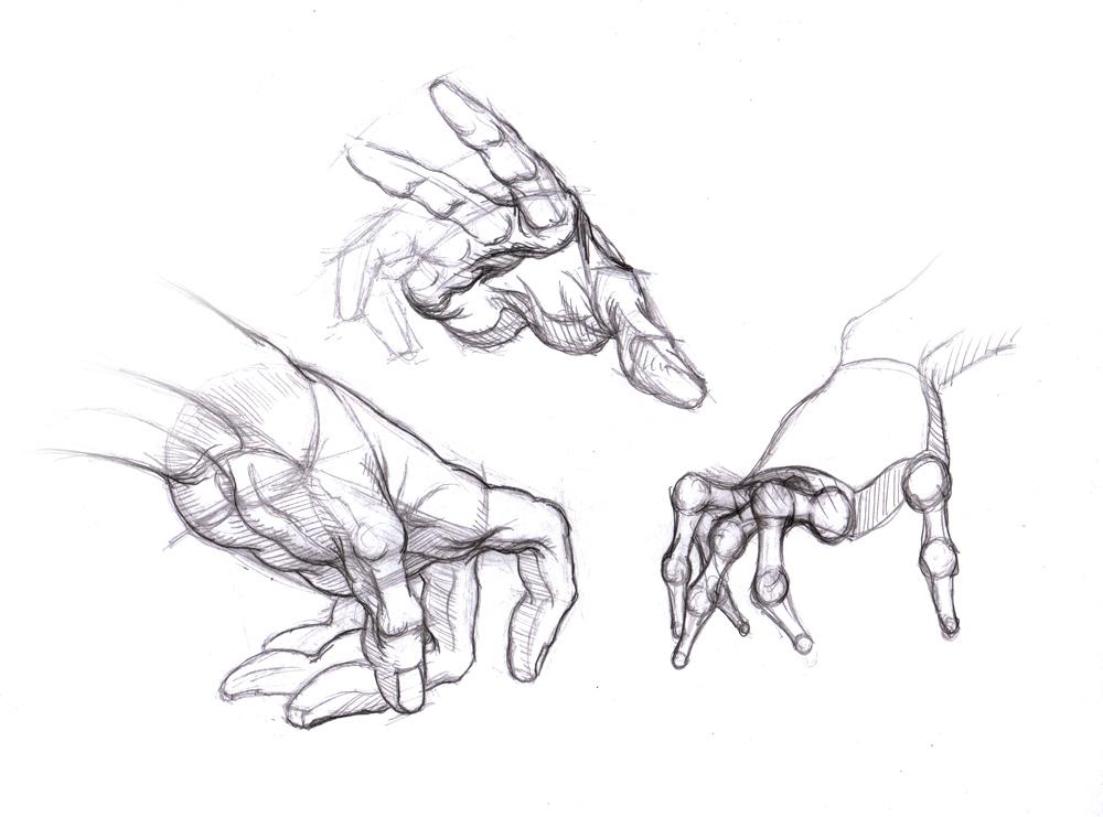 1000x741 Magellin Blog Hand Studies