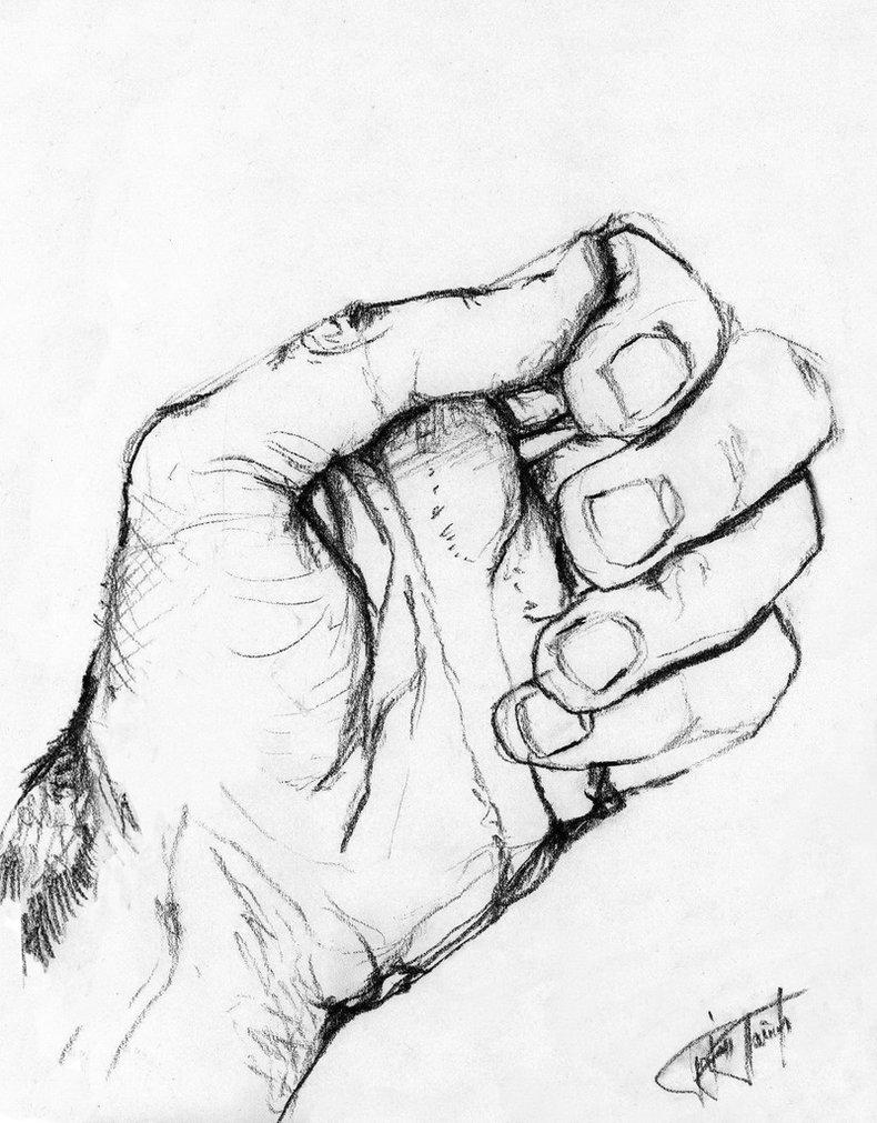 790x1011 Hand Study 5 By Bojanpapic