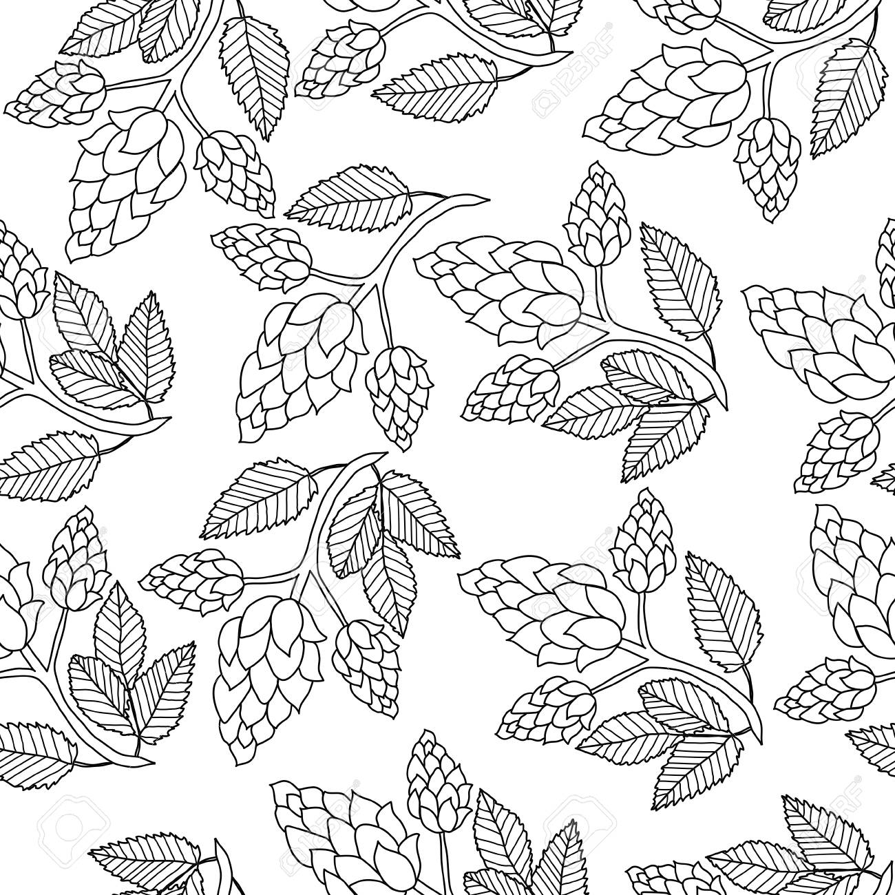 1300x1300 Hops Seamless Pattern, Hand Drawing, Doodle Style. Outline