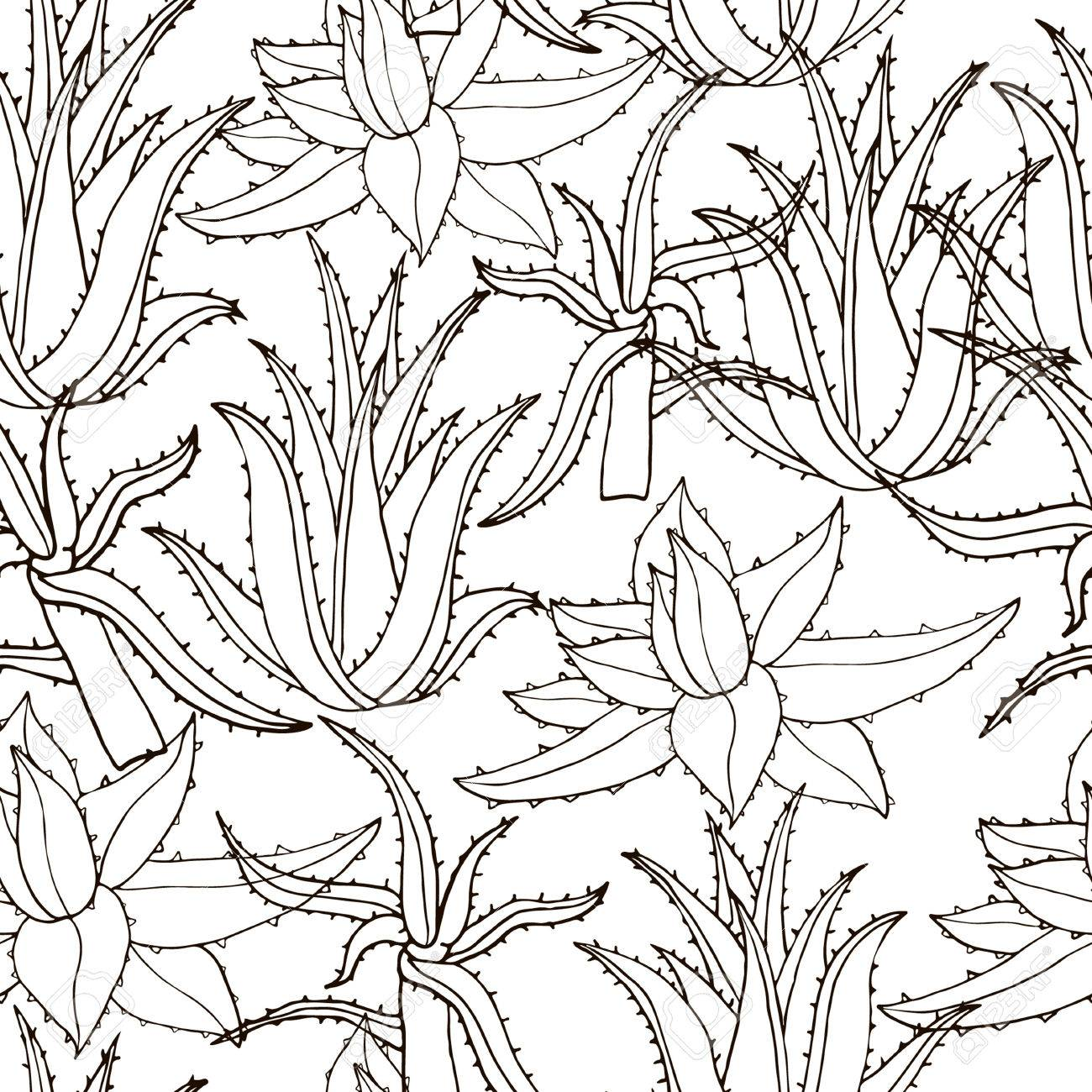 1300x1300 Seamless Vector Pattern With Aloe Vera. Creative Hand Drawn