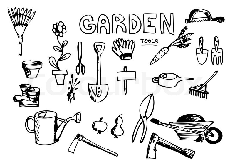 800x572 Hand Drawn Garden Tools Isolated On The White Background Stock