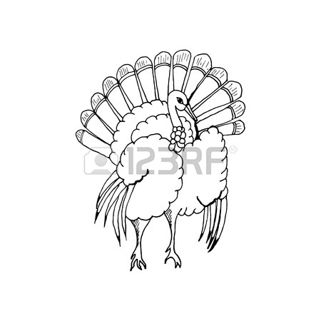 450x450 Hand Draw A Turkey In The Style Of A Sketch On A Black White
