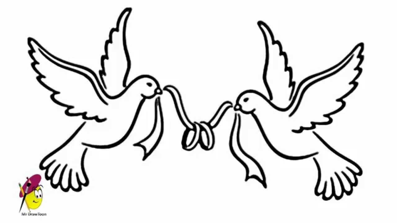 1280x720 Pigeon