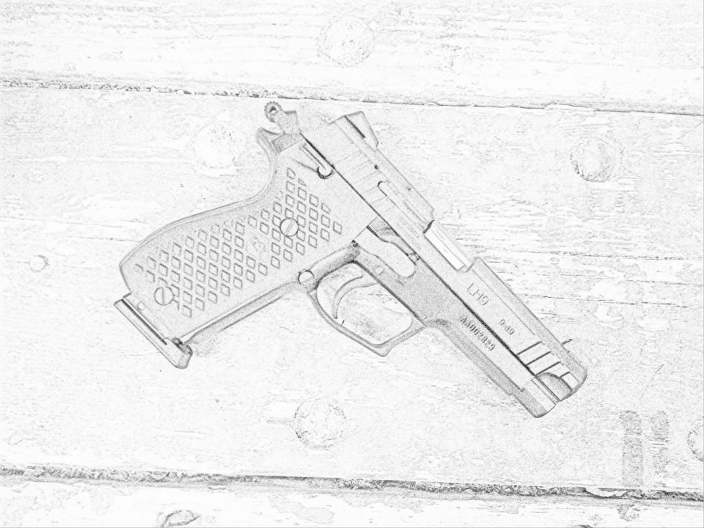 1024x768 Lionheart Gun Nuts Media