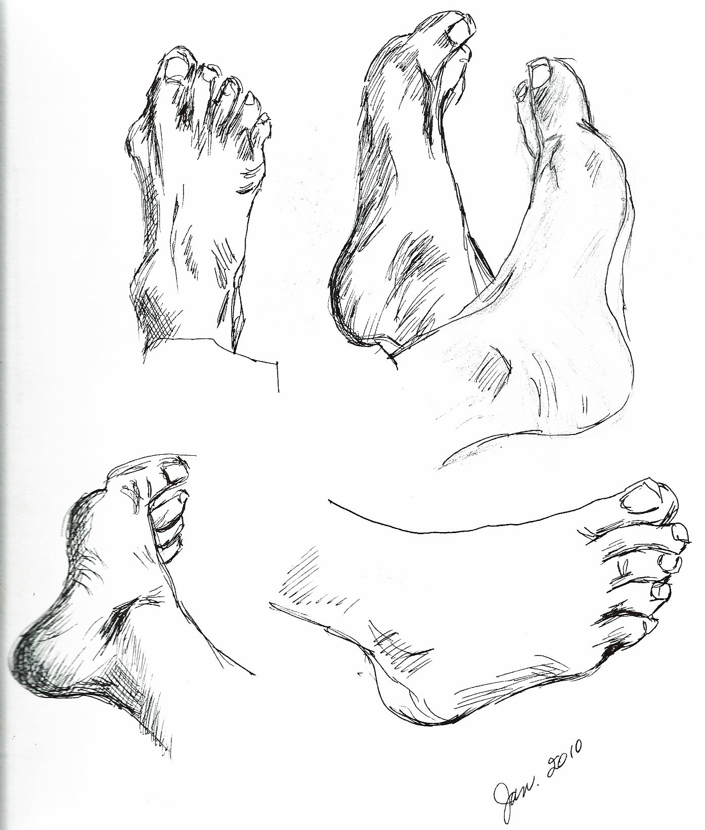 1394x1641 Hands And Feet Stafford Artworks