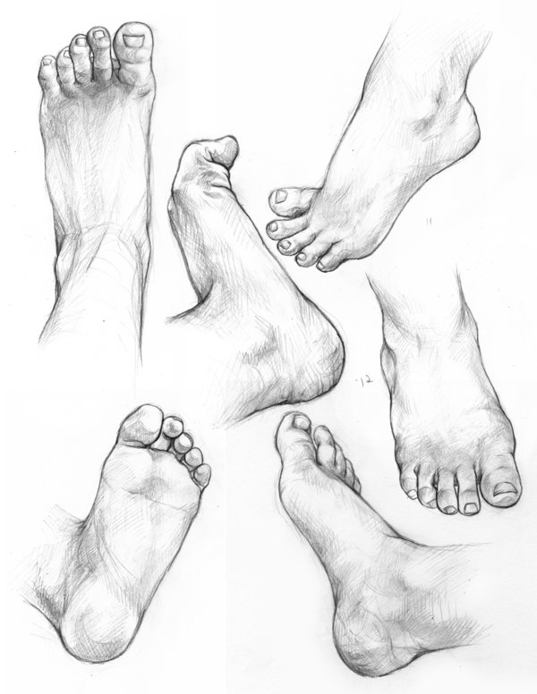 600x776 Strawberrysketches Hands And Feet~