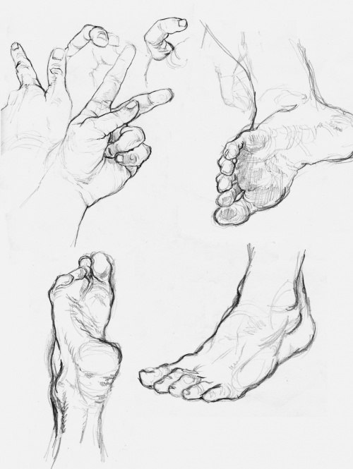 500x665 Hands And Feet Anatomy, Drawings And Sketches