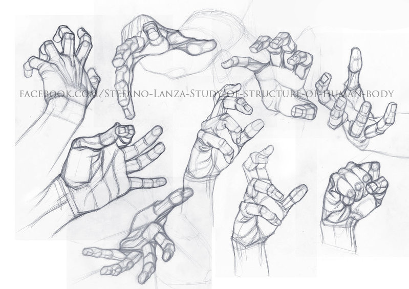799x565 Hands Drawing Hashtag Images On Tumblr