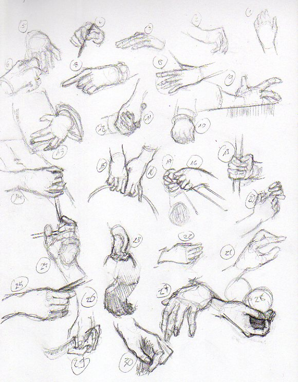 Hands Figure Drawing