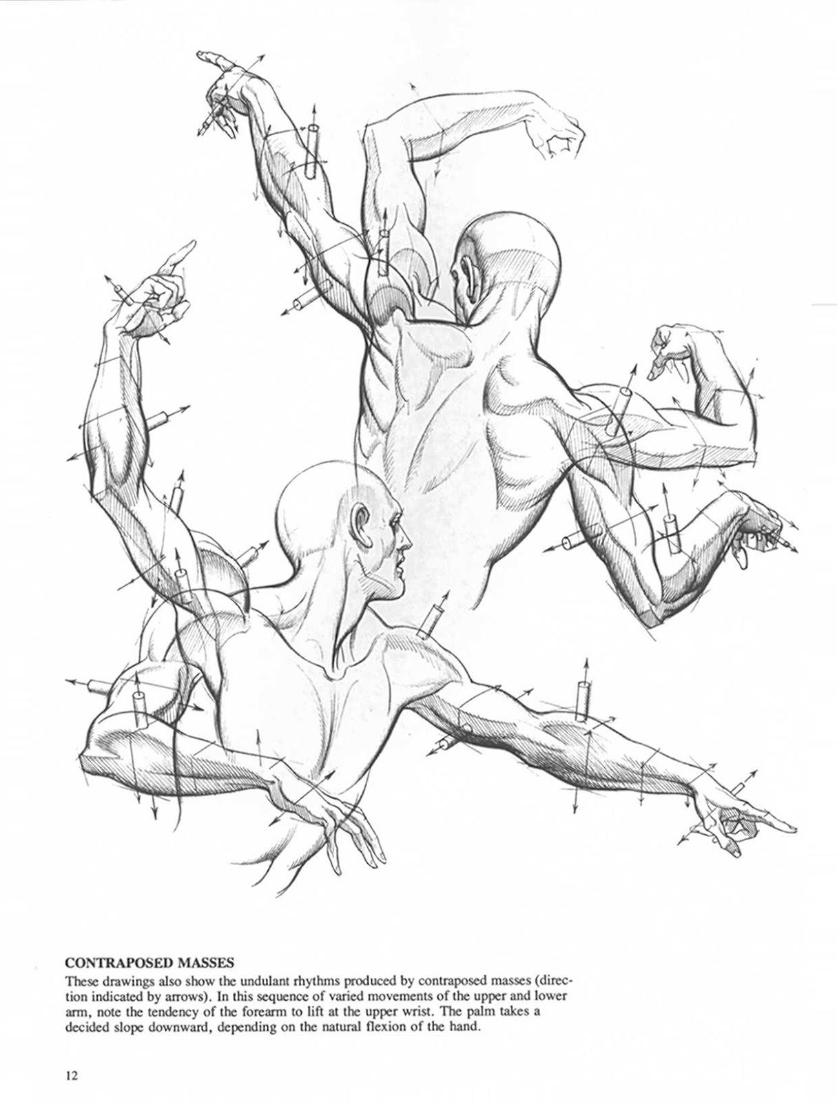 1215x1600 Drawing Dynamic Hands Figuredrawing