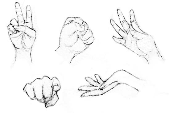 548x368 Drawing Lessons Amp Tutorials For Beginning Artist Drawing