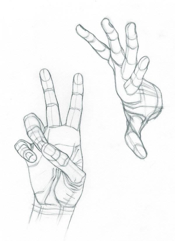 600x826 Hands Id
