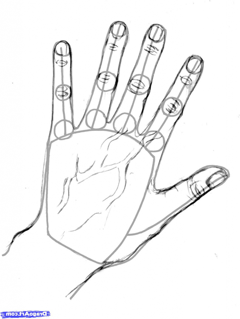 770x1024 Hand Drawing Step By Step How To Draw Realistic Hands Draw Hands