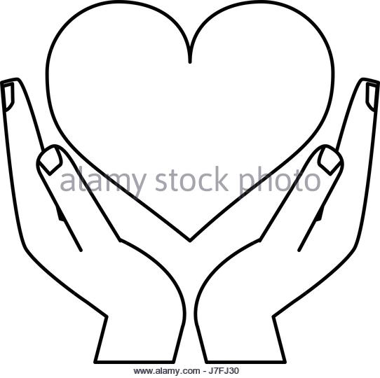 542x540 Holding My Heart Black And White Stock Photos Amp Images