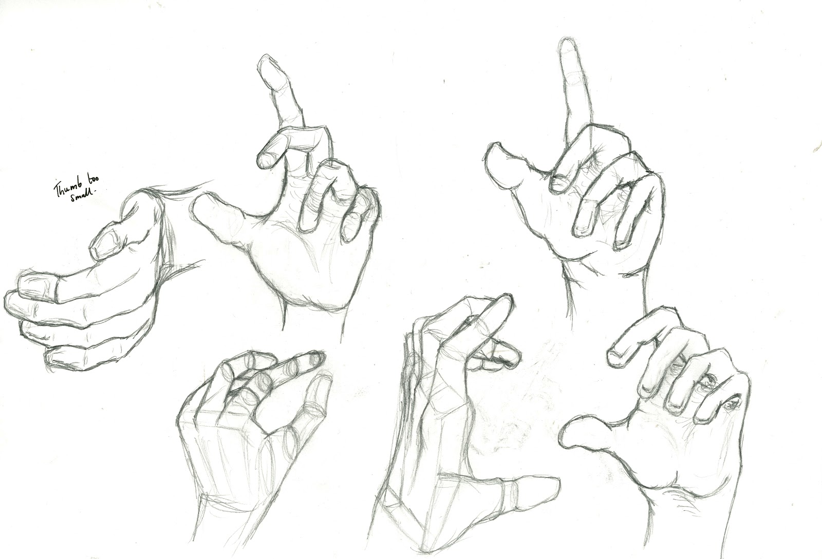 1600x1089 Hand Practice Drawing For Animation